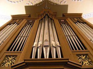 organ-case